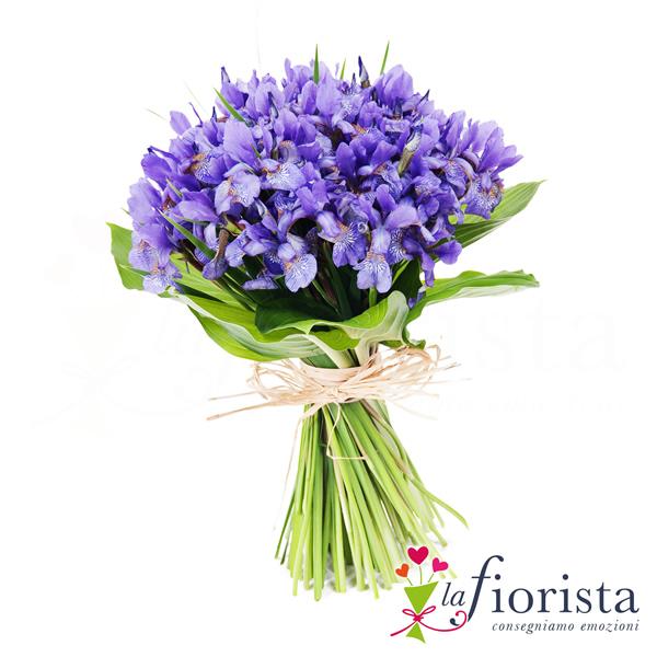 Favoloso Vendita Mazzo di Iris Blu. Consegna fiori a domicilio gratis OX16