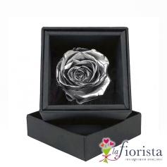 Rosa Argento Stabilizzata Flower box