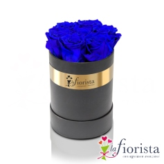 Flower box 7 Rose Blu