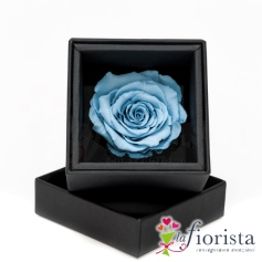 Flower box Rosa Azzurra Stabilizzata