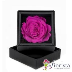 Rosa Fucsia Stabilizzata Flower box