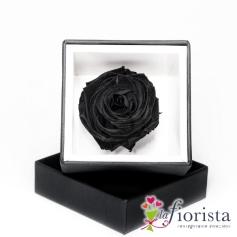 Rosa Nera Stabilizzata Flower box