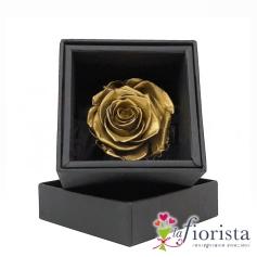 Rosa Oro Stabilizzata Flower box