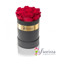 Flower box 7 rose rosse stabilizzate