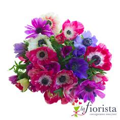 Bouquet di Anemoni colorati