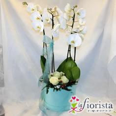 Cappelliera con orchidea