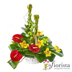 Centrotavola con anthurium e fiori di orchidea