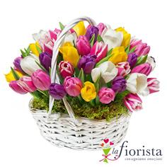 Cestino di tulipani colorati