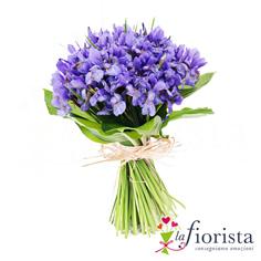 Mazzo di Iris Blu