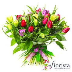 Mix di tulipani