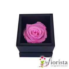 Rosa Rosa Stabilizzata Flower box