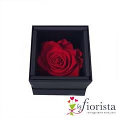 Rosa Rossa Stabilizzata Flower box